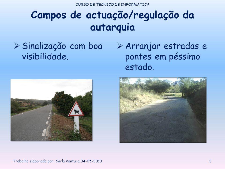 Campos de actuação/regulação da autarquia Sinalização com boa visibilidade. Arranjar estradas e pontes em péssimo estado. CURSO DE TÉCNICO DE INFORMAT