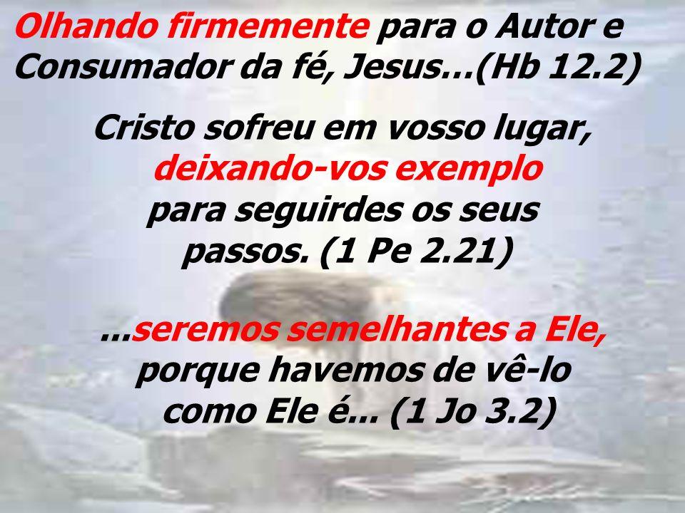 Olhando firmemente para o Autor e Consumador da fé, Jesus…(Hb 12.2) Cristo sofreu em vosso lugar, deixando-vos exemplo para seguirdes os seus passos.