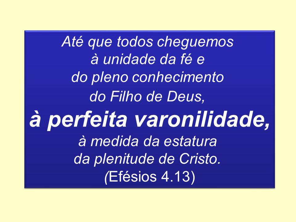 Até que todos cheguemos à unidade da fé e do pleno conhecimento do Filho de Deus, à perfeita varonilidade, à medida da estatura da plenitude de Cristo.