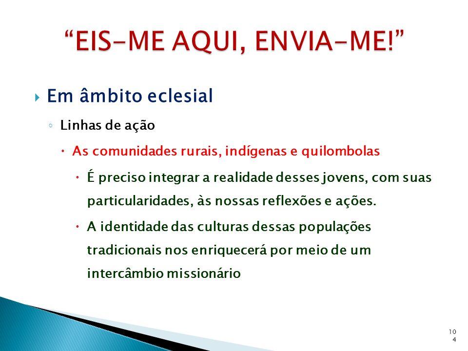 Em âmbito eclesial Linhas de ação As comunidades rurais, indígenas e quilombolas É preciso integrar a realidade desses jovens, com suas particularidades, às nossas reflexões e ações.