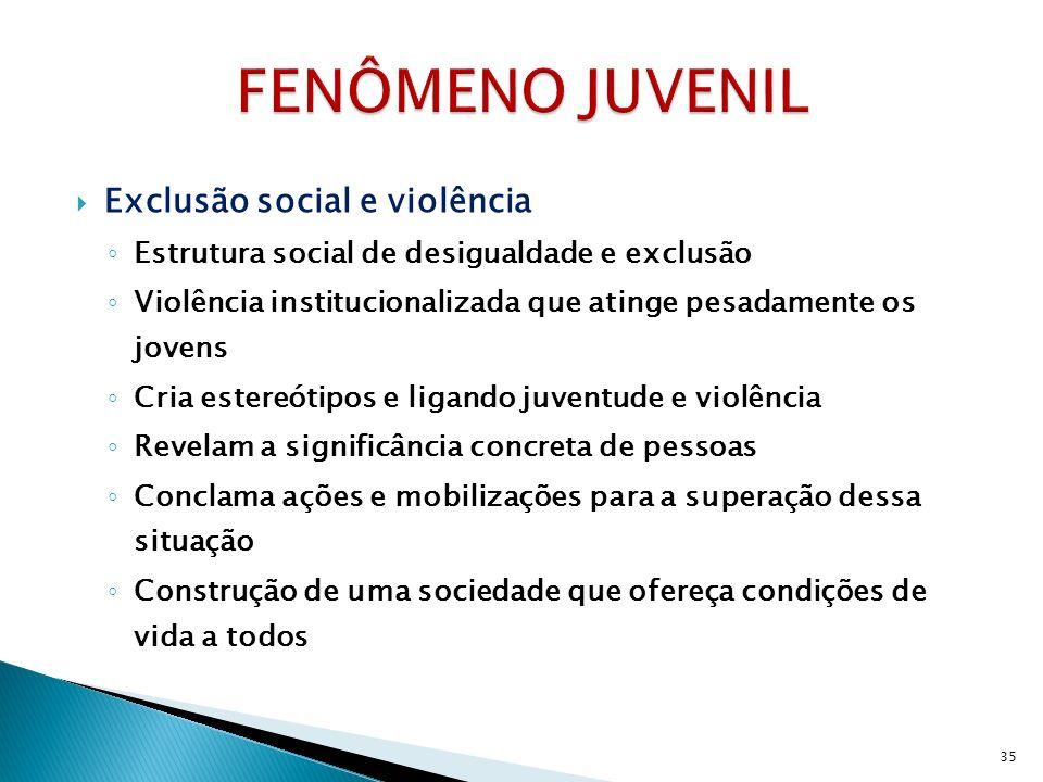 Exclusão social e violência Estrutura social de desigualdade e exclusão Violência institucionalizada que atinge pesadamente os jovens Cria estereótipo