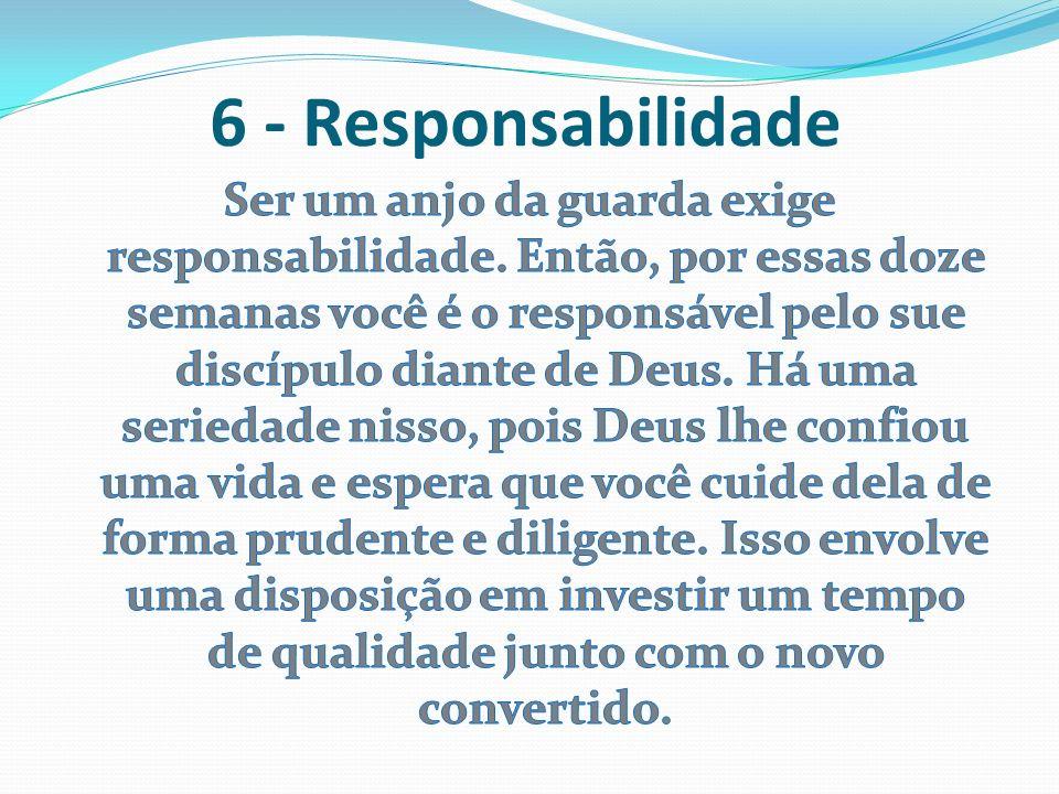 6 - Responsabilidade