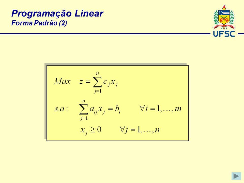 Programação Linear Forma Padrão (2)