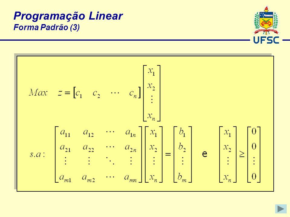 Programação Linear Forma Padrão (3)