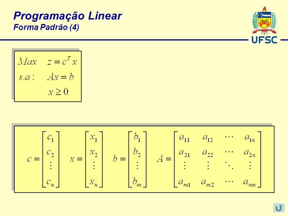 Programação Linear Forma Padrão (4)