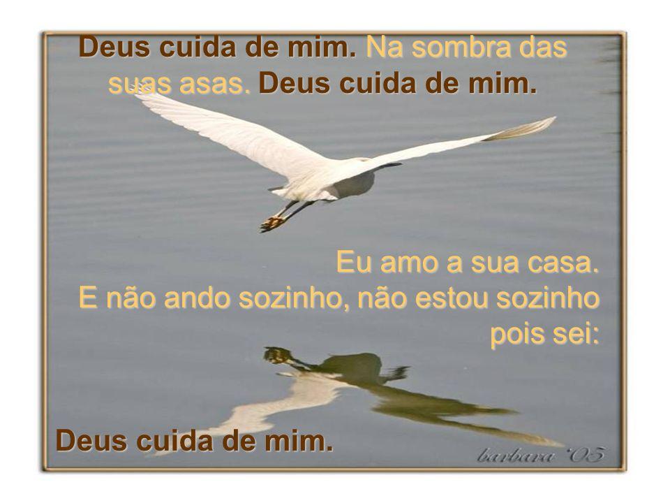 Deus cuida de mim.Na sombra das suas asas. Deus cuida de mim.