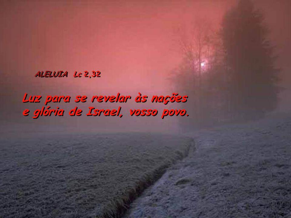 Heb 2, 14-18 14 Uma vez que os filhos têm o mesmo sangue e a mesma carne, também Jesus compartilhou igualmente a mesma natureza, para reduzir à impotê