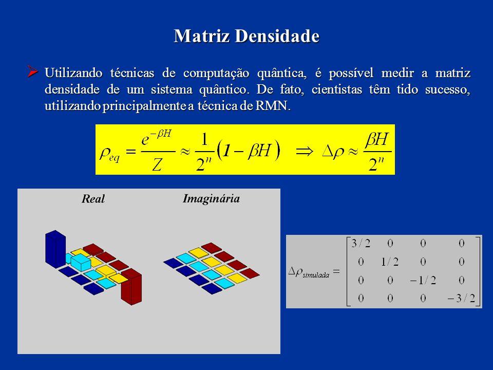 Utilizando técnicas de computação quântica, é possível medir a matriz densidade de um sistema quântico. De fato, cientistas têm tido sucesso, utilizan