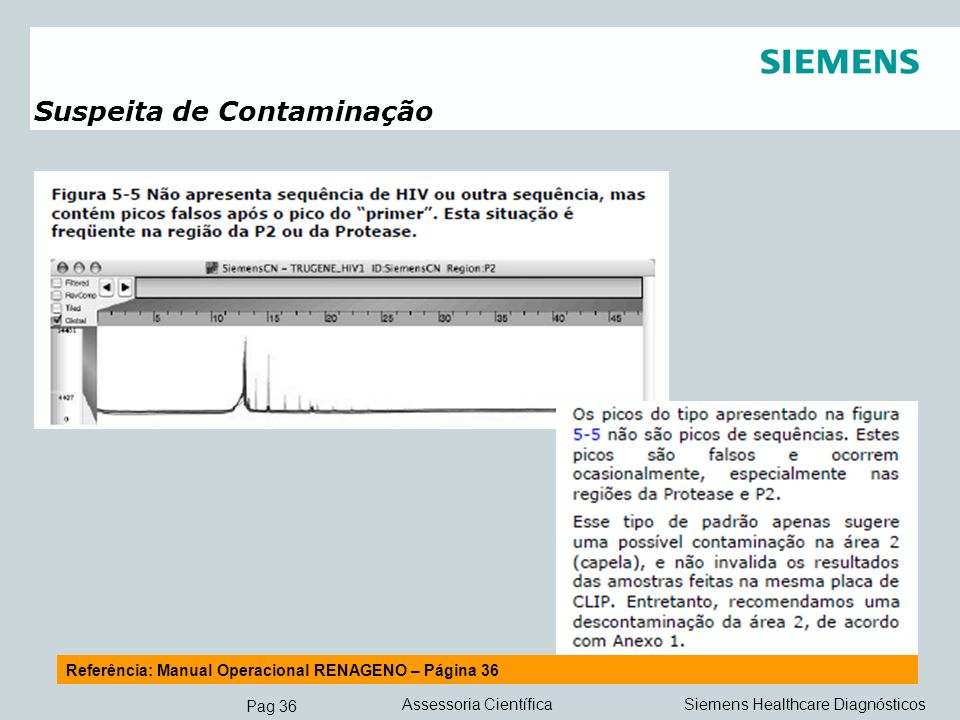 Pag 36 Siemens Healthcare DiagnósticosAssessoria Científica Suspeita de Contaminação Referência: Manual Operacional RENAGENO – Página 36