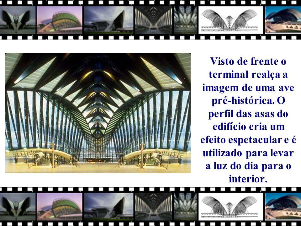 Visto de frente o terminal realça a imagem de uma ave pré-histórica.