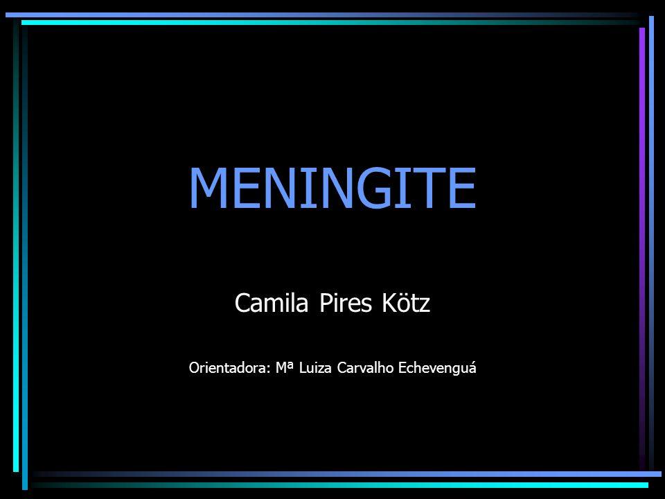 MENINGITE Camila Pires Kötz Orientadora: Mª Luiza Carvalho Echevenguá