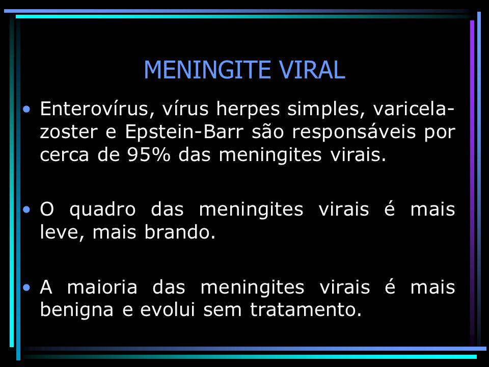 MENINGITE VIRAL Enterovírus, vírus herpes simples, varicela- zoster e Epstein-Barr são responsáveis por cerca de 95% das meningites virais.