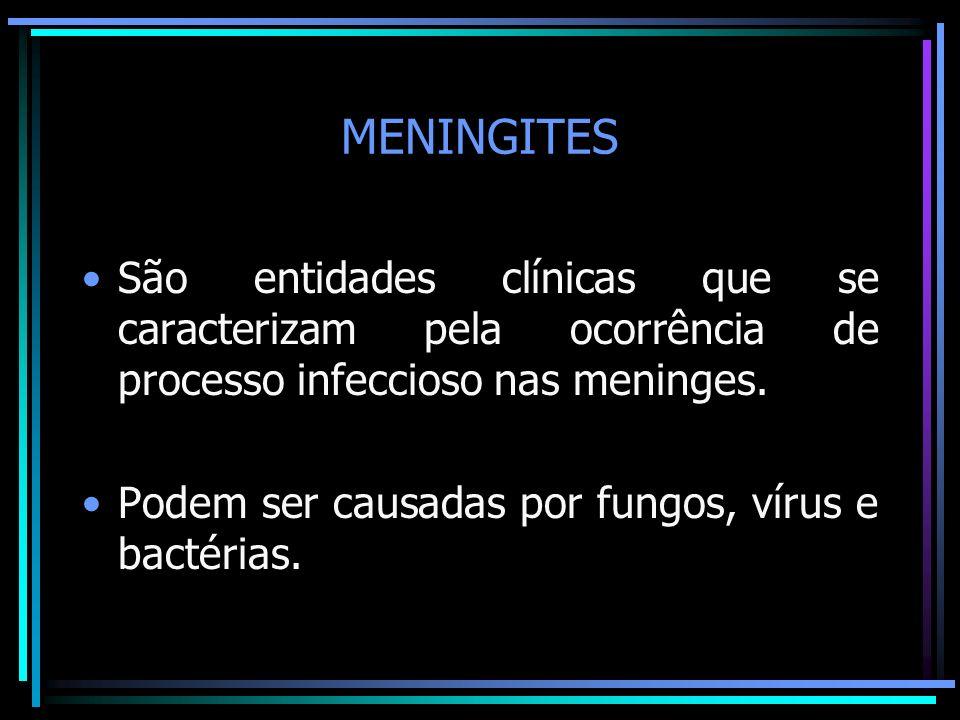 MENINGITES São entidades clínicas que se caracterizam pela ocorrência de processo infeccioso nas meninges.