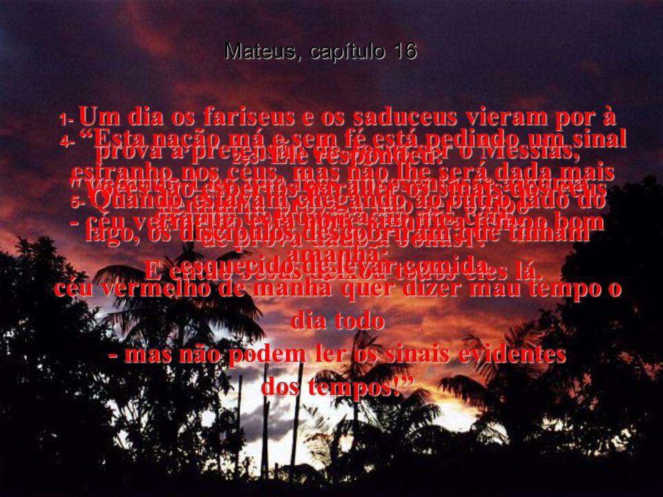 MATEUS, Capítulo 16 Capítulo 16