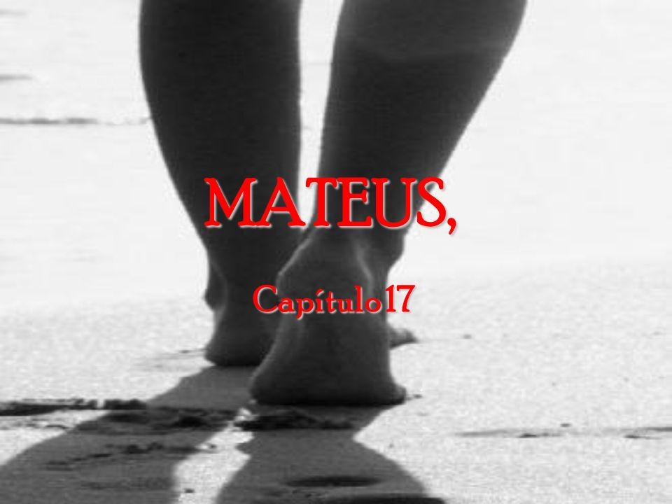 Mateus, capítulo 16 24- Então Jesus disse aos discípulos: Se alguém quer ser um dos meus seguidores, negue-se a si mesmo, tome a sua cruz e siga-Me.
