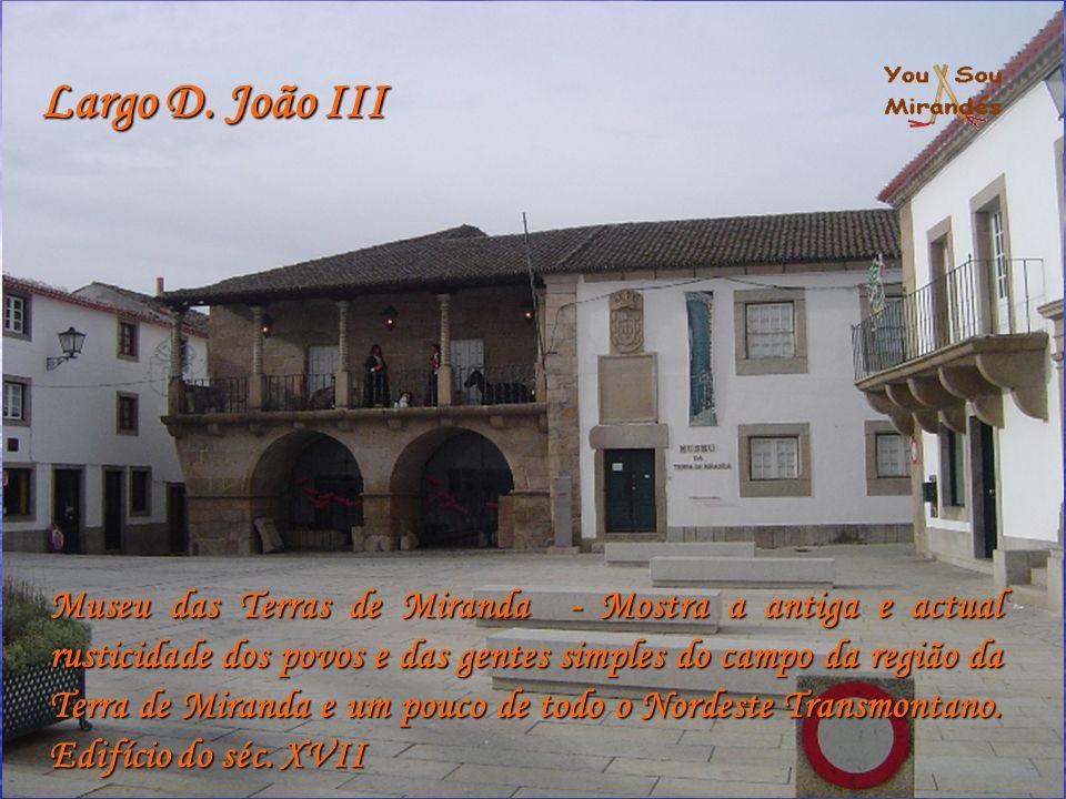 Largo D. João III Museu das Terras de Miranda - Mostra a antiga e actual rusticidade dos povos e das gentes simples do campo da região da Terra de Mir