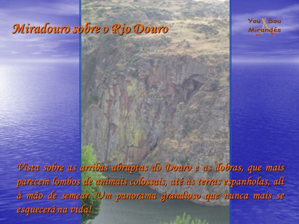 Miradouro sobre o Rio Douro Vista sobre as arribas abruptas do Douro e as dobras, que mais parecem lombos de animais colossais, até às terras espanholas, ali à mão de semear.