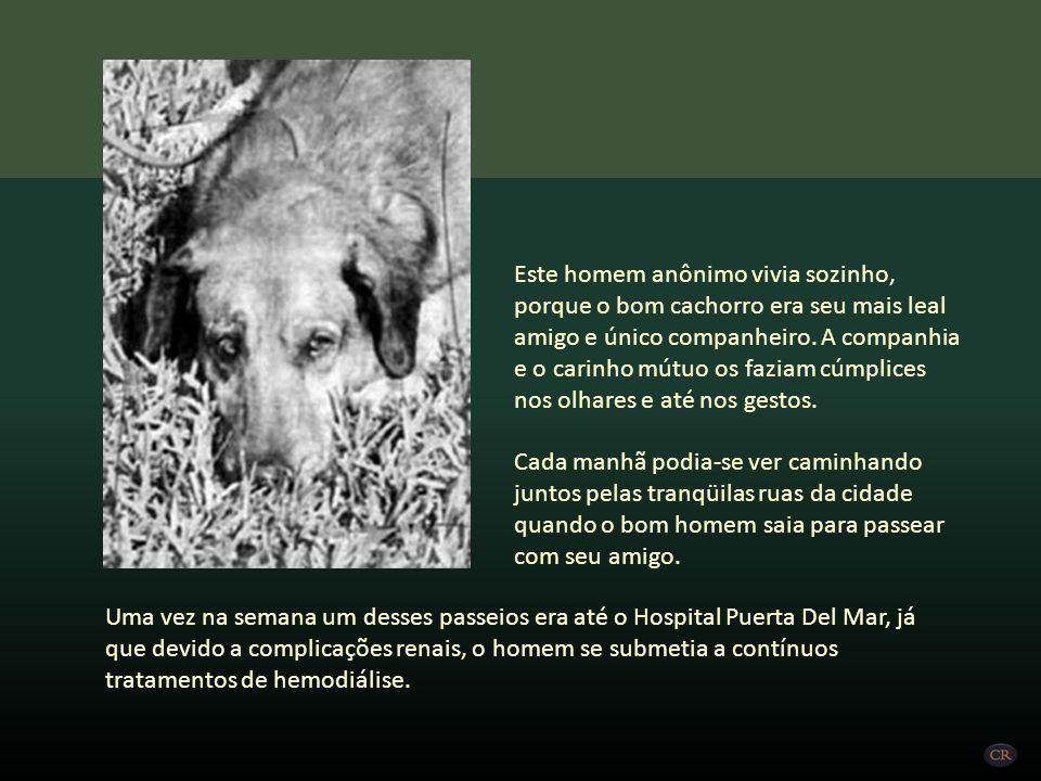 Canelo foi o cão de um homem que no final dos anos 80 vivia e morava na cidade de Cadiz, na Espanha. Um animal de estimação que seguia o seu proprietá