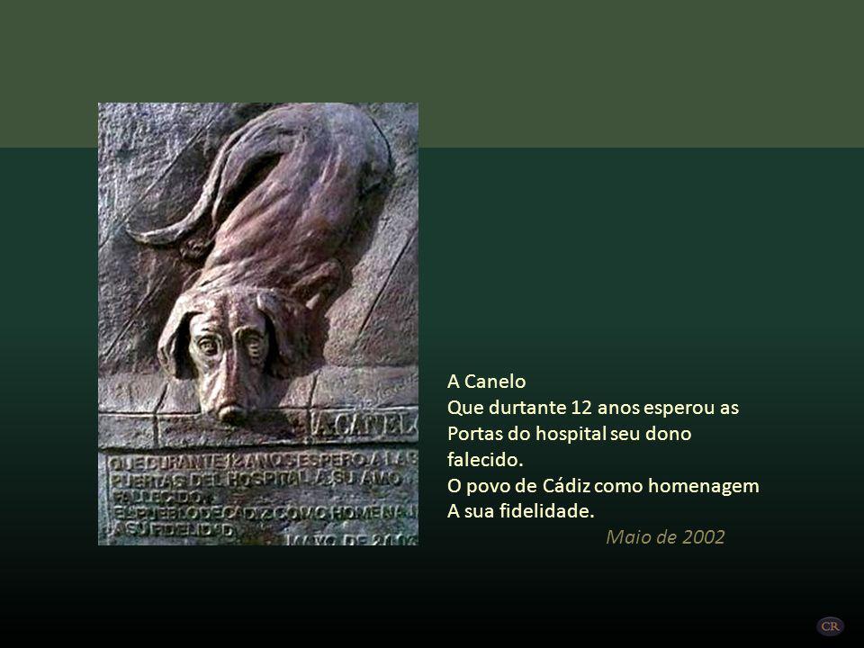A história de Canelo ficou muito conhecida em toda cidade de Cádiz. O povo gaditano, em reconhecimento ao carinho, dedicação e lealdade de Canelo, col