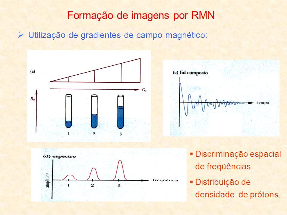 Formação de imagens por RMN Utilização de gradientes de campo magnético: Discriminação espacial de freqüências. Distribuição de densidade de prótons.