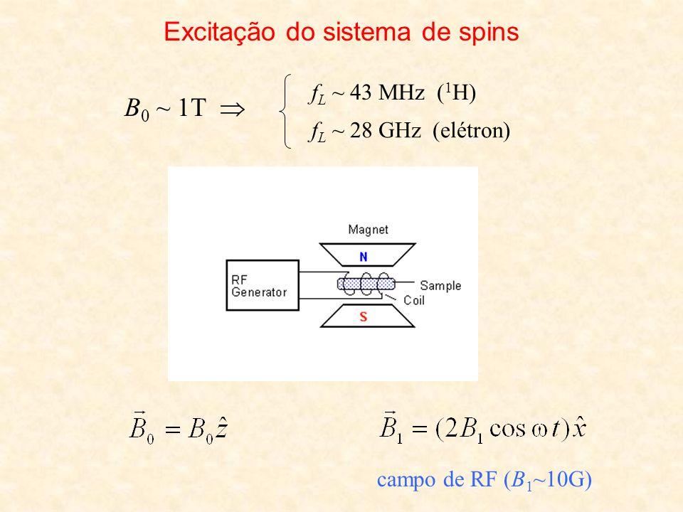 Excitação do sistema de spins B 0 ~ 1T f L ~ 43 MHz ( 1 H) f L ~ 28 GHz (elétron) campo de RF (B 1 ~10G)