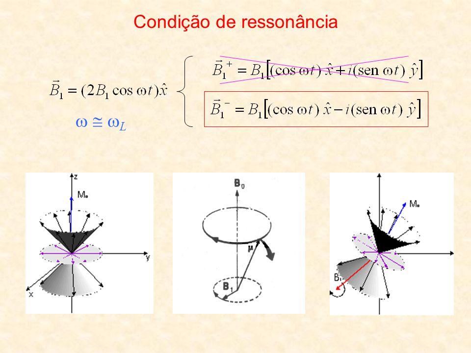 Efeitos do campo de RF sobre a magnetização Sistema girante de coordenadas