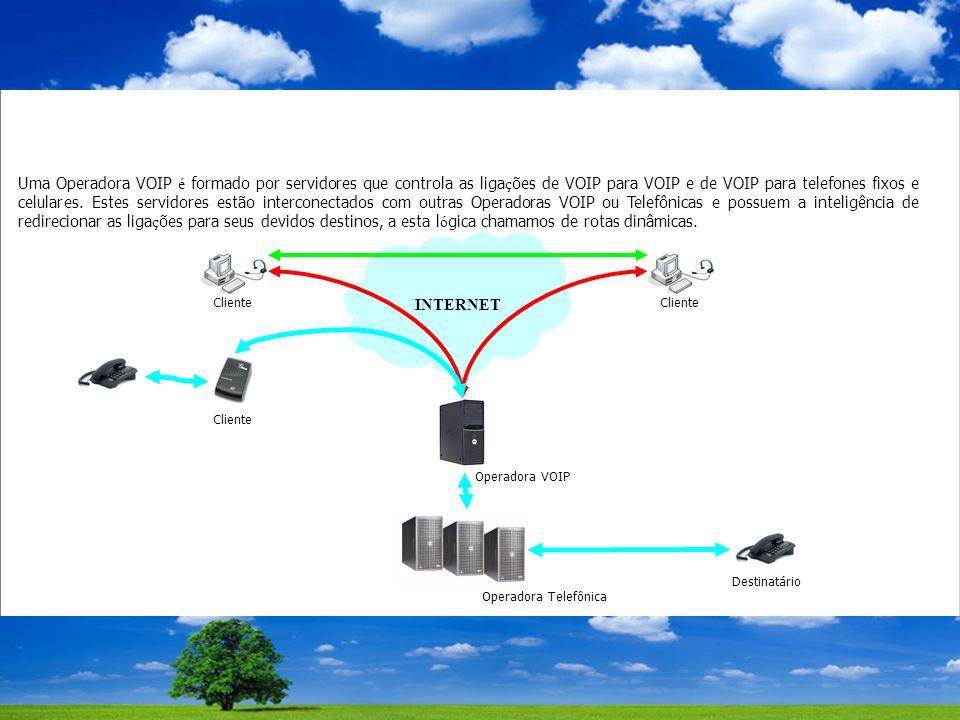 Uma Operadora VOIP é formado por servidores que controla as liga ç ões de VOIP para VOIP e de VOIP para telefones fixos e celulares.