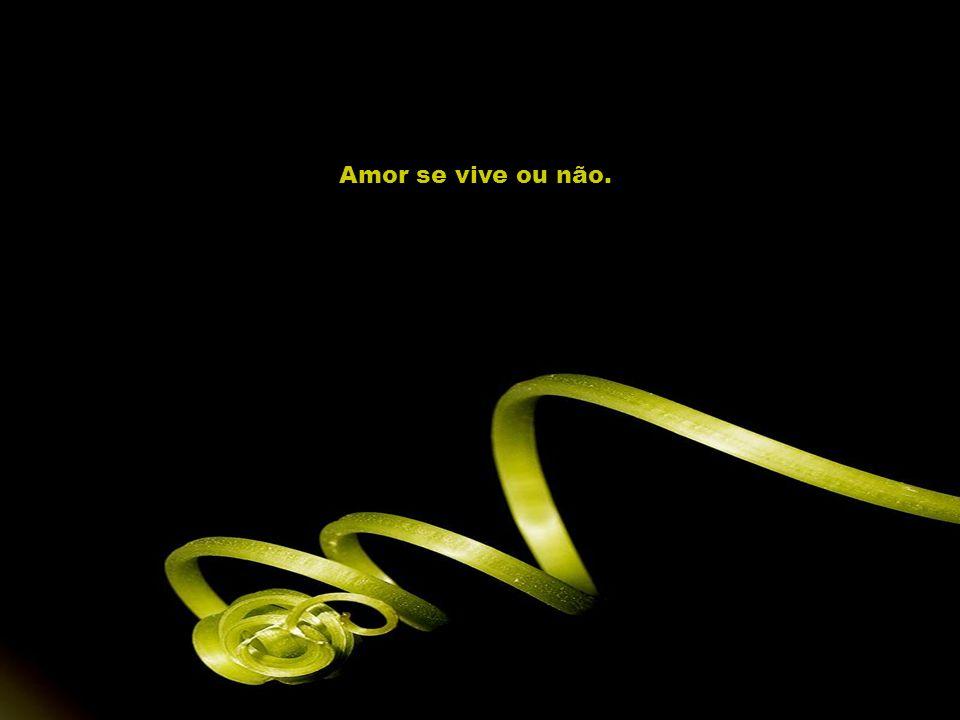 Amor se vive ou não.