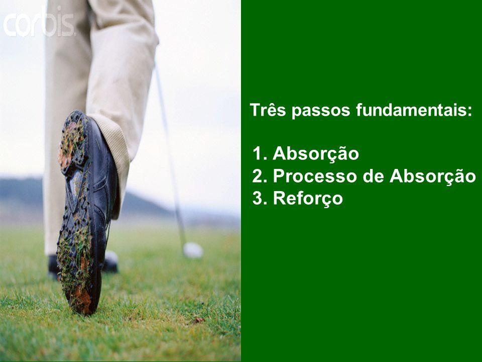 Três passos fundamentais: 1. Absorção 2. Processo de Absorção 3. Reforço
