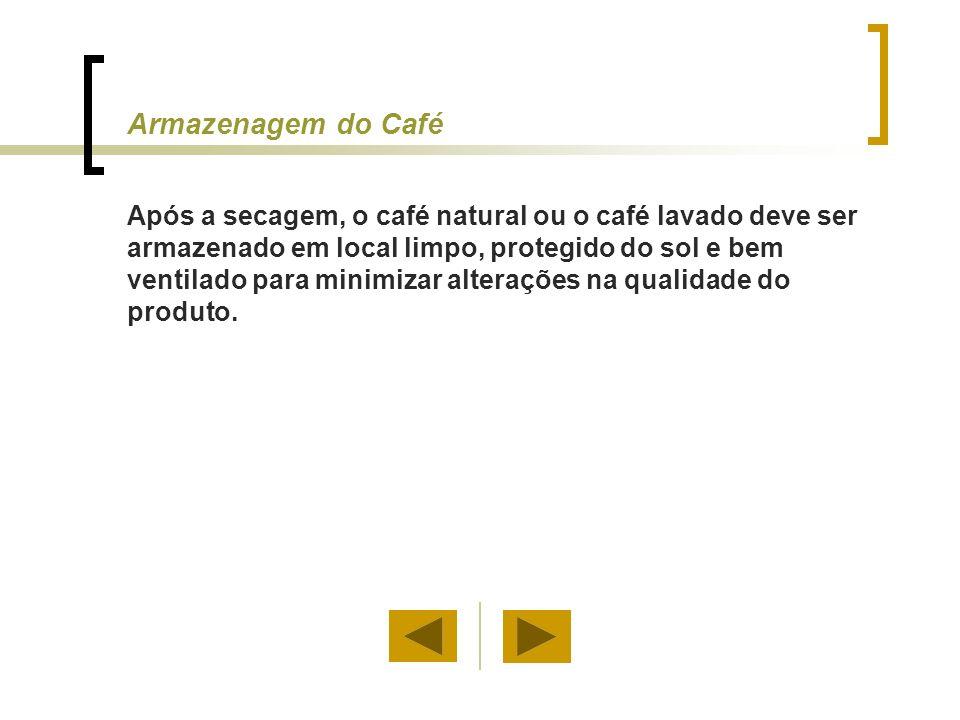 Armazenagem do Café Após a secagem, o café natural ou o café lavado deve ser armazenado em local limpo, protegido do sol e bem ventilado para minimiza