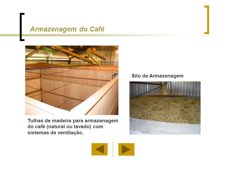 Tulhas de madeira para armazenagem do café (natural ou lavado) com sistemas de ventilação. Silo de Armazenagem Armazenagem do Café