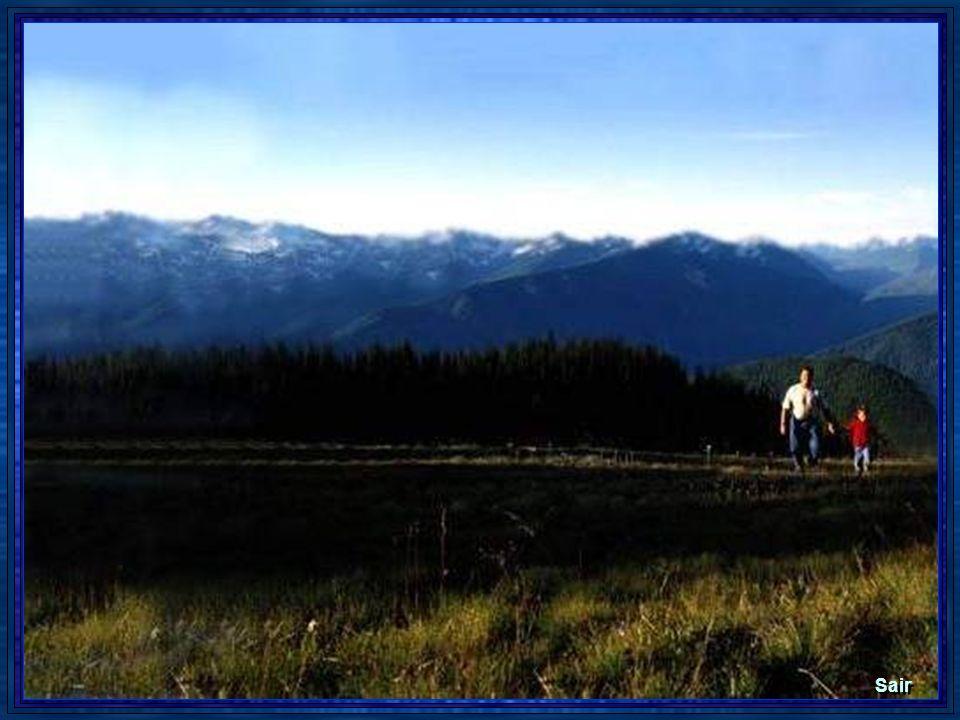 Texto: Recebido, por e-mail, de Fernando Patronilo DAraújo, em 09 fev. 2006. Imagem: Getty Imagem (editada). Música: Zé Rodrix e Tavito - Casa no camp