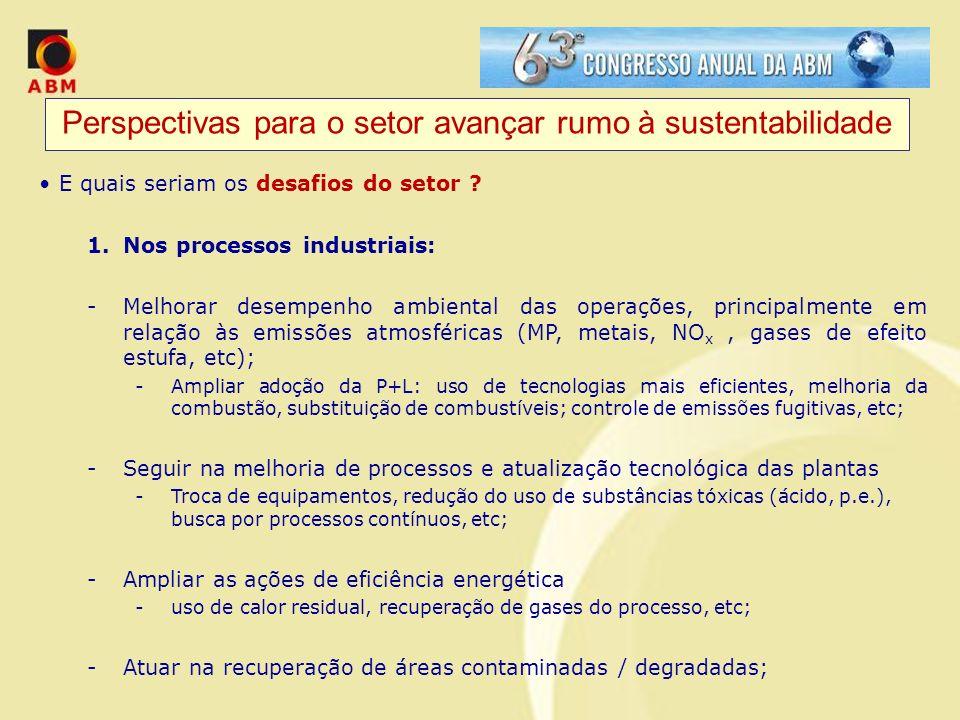 Perspectivas para o setor avançar rumo à sustentabilidade E quais seriam os desafios do setor ? 1.Nos processos industriais: -Melhorar desempenho ambi