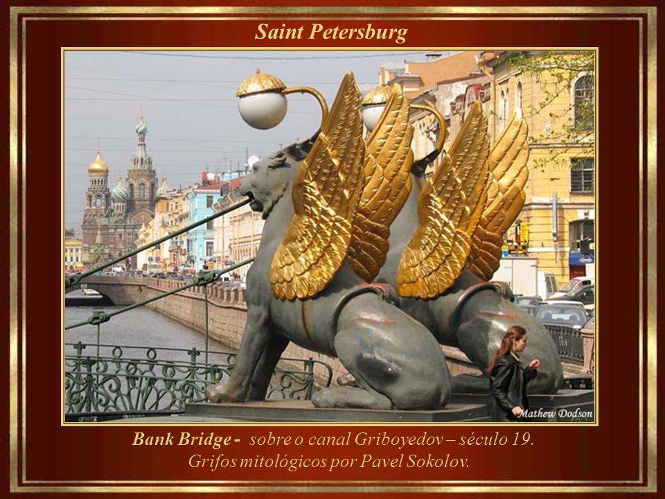 Saint Petersburg Rio Neva e os Doze Colégios da Saint Petersburg University