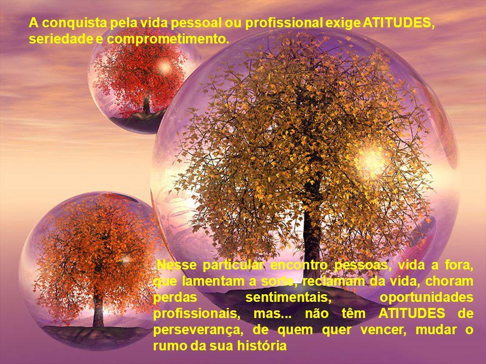 A conquista pela vida pessoal ou profissional exige ATITUDES, seriedade e comprometimento.
