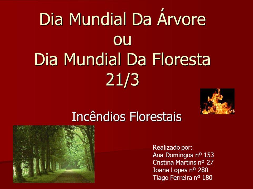 Introdução Este trabalho é no âmbito do Dia Mundial da Árvore ou Dia Mundial da Floresta que se festeja-se em 21 de Março.