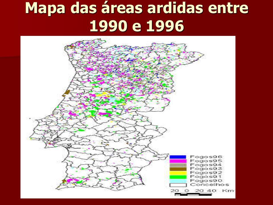 Mapa das áreas ardidas entre 1990 e 1996
