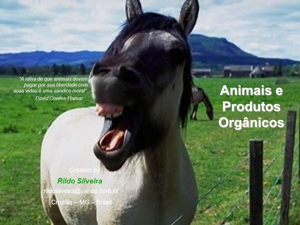 Animais e Produtos Orgânicos A idéia de que animais devam pagar por sua liberdade com suas vidas é uma sandice moral.