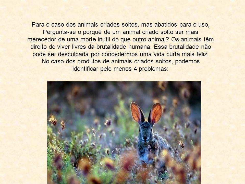 Para o caso dos animais criados soltos, mas abatidos para o uso, Pergunta-se o porquê de um animal criado solto ser mais merecedor de uma morte inútil do que outro animal.