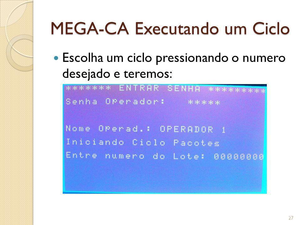 MEGA-CA Executando um Ciclo Escolha um ciclo pressionando o numero desejado e teremos: 27