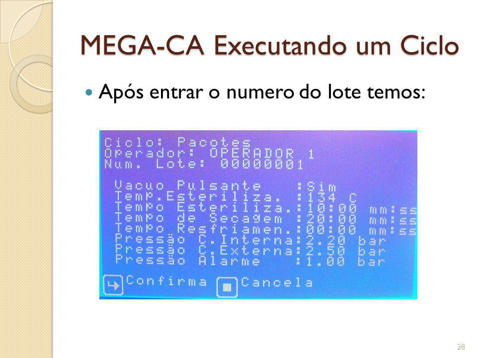 MEGA-CA Executando um Ciclo Após entrar o numero do lote temos: 28
