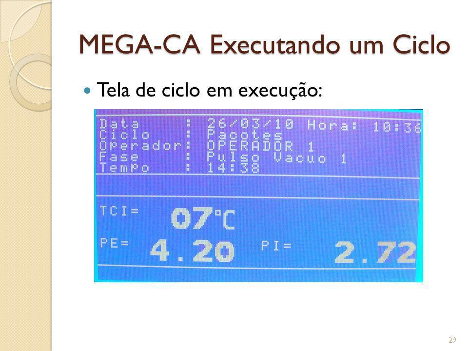 MEGA-CA Executando um Ciclo Tela de ciclo em execução: 29