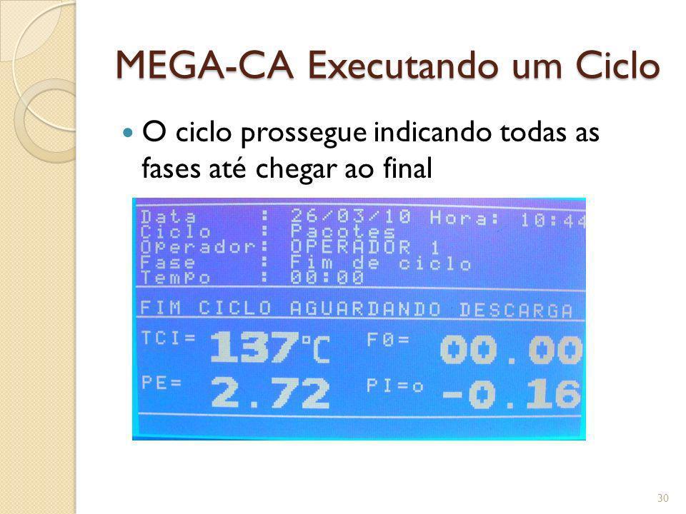 MEGA-CA Executando um Ciclo O ciclo prossegue indicando todas as fases até chegar ao final 30