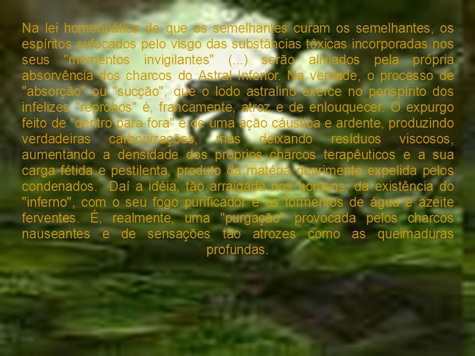 Na lei homeopática de que os semelhantes curam os semelhantes, os espíritos sufocados pelo visgo das substâncias tóxicas incorporadas nos seus