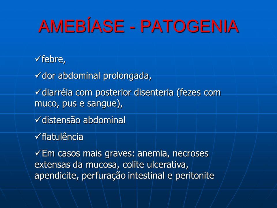 AMEBÍASE - PATOGENIA febre, febre, dor abdominal prolongada, dor abdominal prolongada, diarréia com posterior disenteria (fezes com muco, pus e sangue