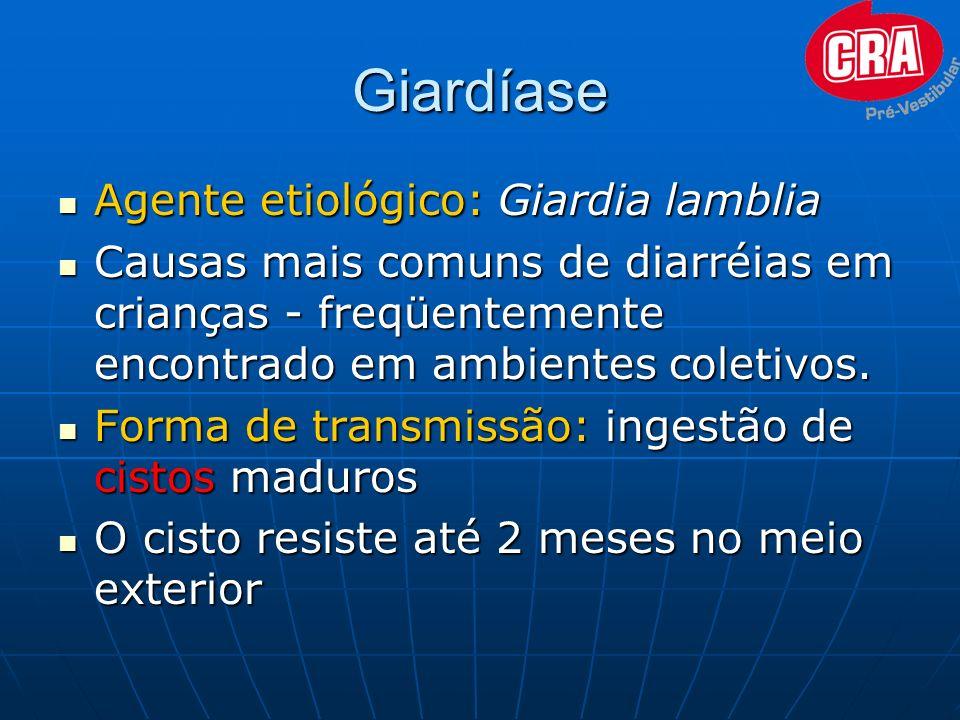 Giardíase Agente etiológico: Giardia lamblia Agente etiológico: Giardia lamblia Causas mais comuns de diarréias em crianças - freqüentemente encontrad