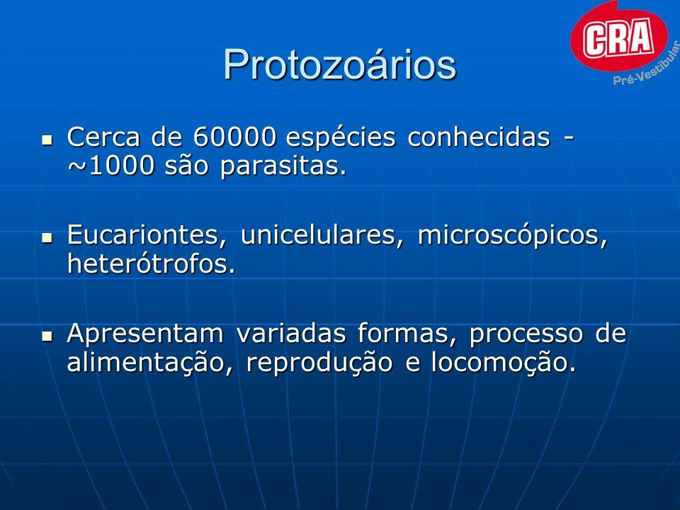 Protozoários Cerca de 60000 espécies conhecidas - ~1000 são parasitas. Cerca de 60000 espécies conhecidas - ~1000 são parasitas. Eucariontes, unicelul
