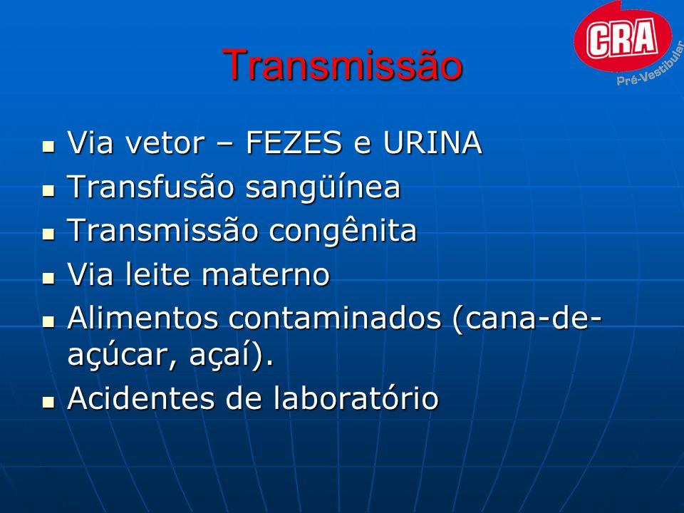 Transmissão Via vetor – FEZES e URINA Via vetor – FEZES e URINA Transfusão sangüínea Transfusão sangüínea Transmissão congênita Transmissão congênita