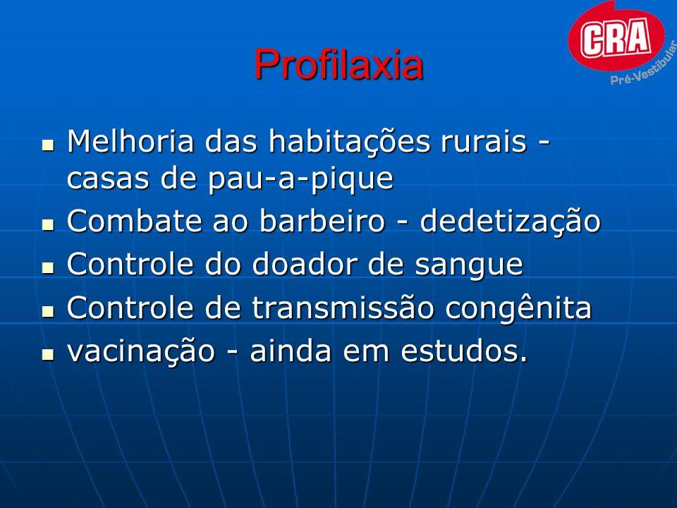 Profilaxia Melhoria das habitações rurais - casas de pau-a-pique Melhoria das habitações rurais - casas de pau-a-pique Combate ao barbeiro - dedetizaç