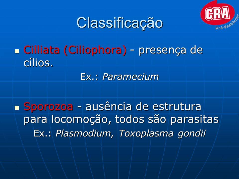 Classificação Cilliata (Ciliophora) - presença de cílios. Cilliata (Ciliophora) - presença de cílios. Ex.: Paramecium Sporozoa - ausência de estrutura